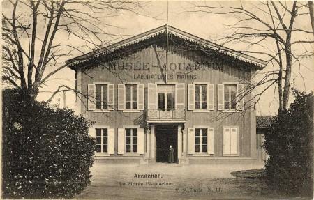 Le Musée, l'Aquarium