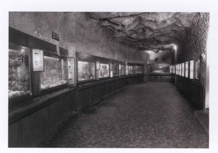 Main hall of the Aquarium Arcachon.