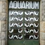 Porte principale de l'aquarium