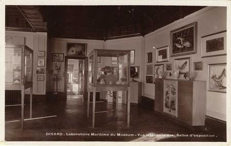 Vue intérieure des salles d'exposition