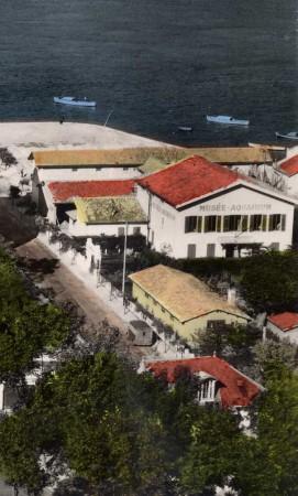 Le Musée Aquarium à la fin des années 50